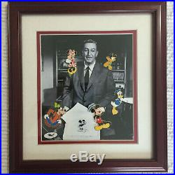 Framed 5 Character Pin Set On A Walt Disney Photo Limited Edition