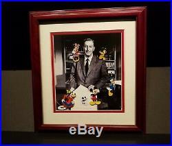 Mahogany Framed 5 Character Pin Set On A Walt Disney Photo Limited Edition