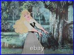 Walt Disney Production 1959 Animation Cel Sleeping Beauty Briar Rose, Framed
