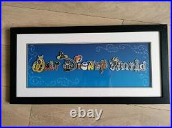 Walt Disney World Limited Edition Pins with Glass Frame RARE 15 pins