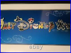 Walt Disney World Park Attractions Character Letter Framed 15 Pin Set VERY RARE